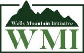 Wells Mountain, LLC, Wells Mountain Initiative