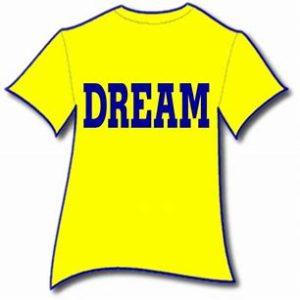 The DREAM Program