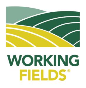 Working Fields